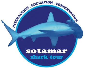 Sotamar Shark tour